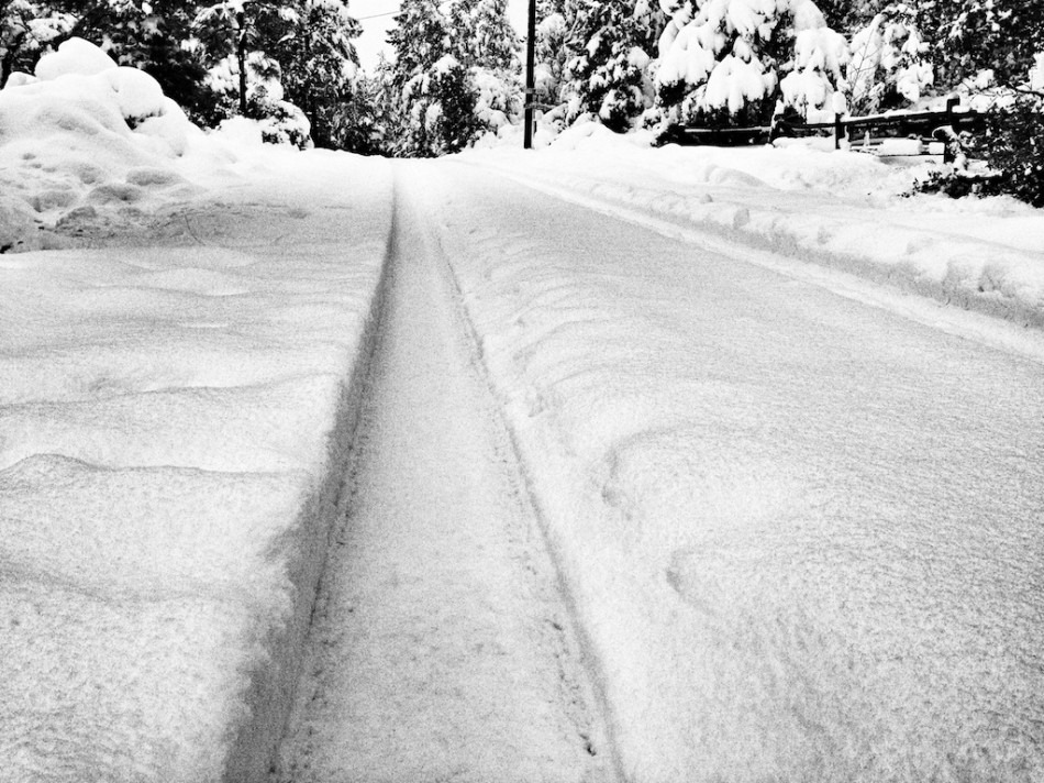 Converging Snow Lines