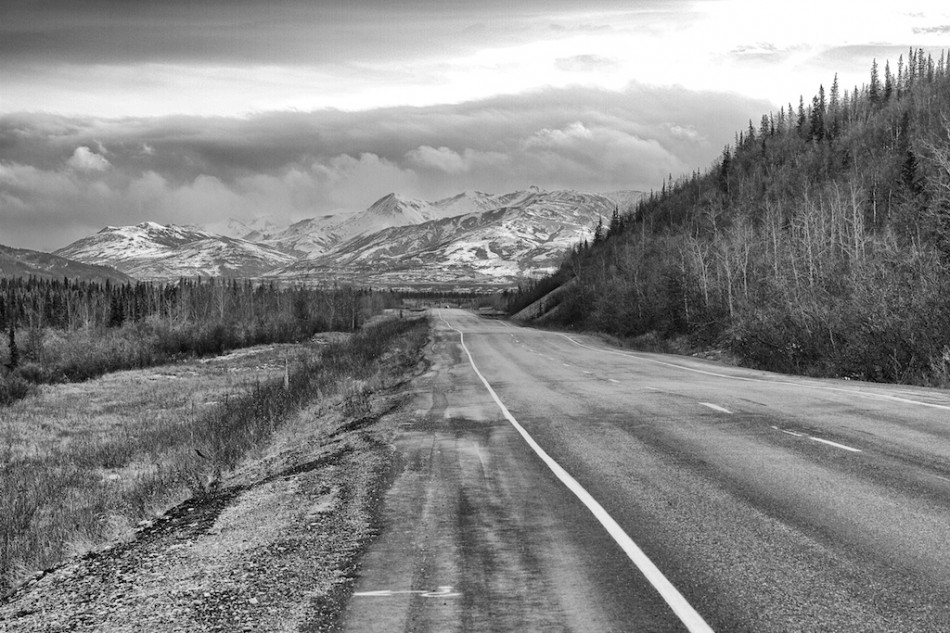 The Road to Denali