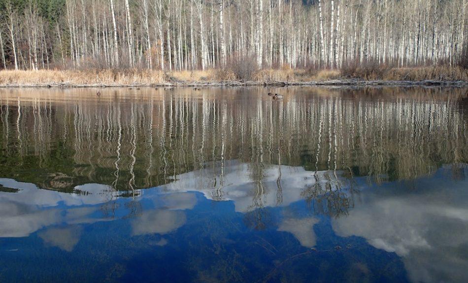 Mirror World of Paul Lake